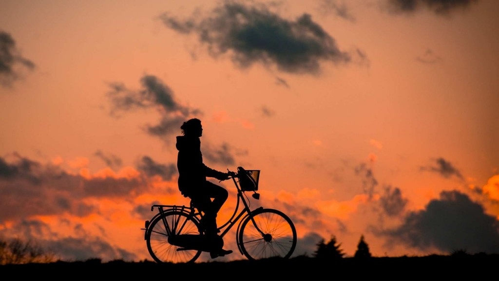 paseo-bici